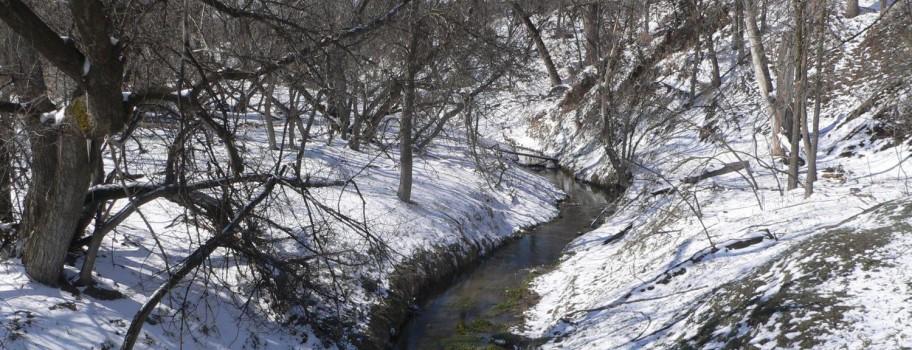 Beaver Creek Image