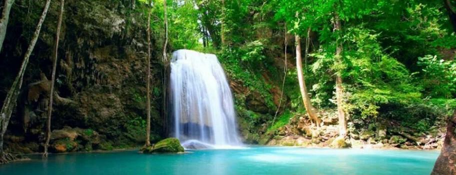Guanacaste Image
