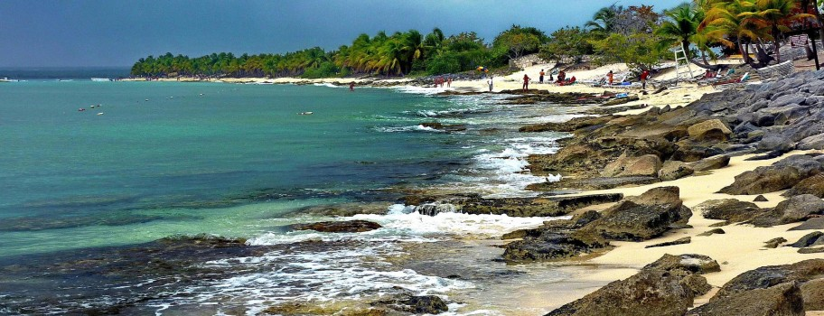 Tortola Image