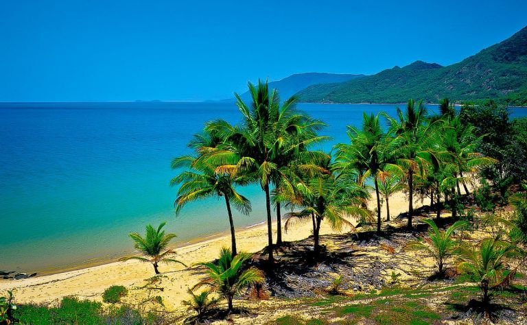 Cairns Image