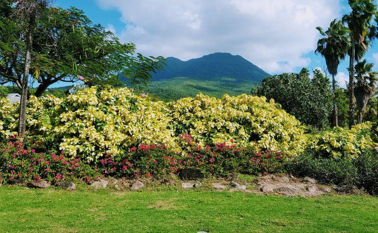 St. Kitts & Nevis Image