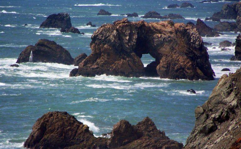 Bodega Bay Image